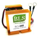 Golf Cart 48 Volt Battery Desulfator BLS-48B
