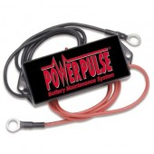 48 Volt PowerPulse PP48L Lead-Acid Battery Desulfator