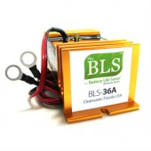 36 Volt Battery Life Saver BLS-36A