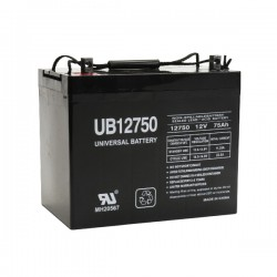 UPG UB 12750-Z1 (Group 24) 12 Volt 75Ah Battery